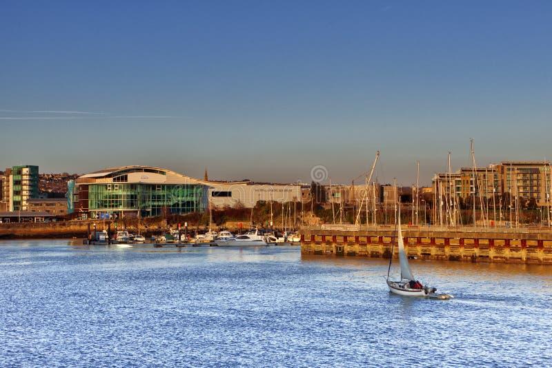 水族馆海洋国家普利茅斯 免版税库存图片