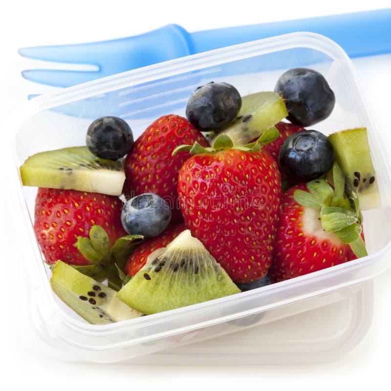 水果沙拉午餐盒 库存图片