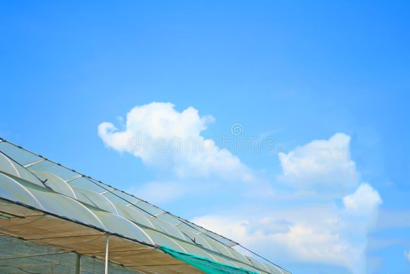 水栽法温室和天空屋顶  免版税库存图片