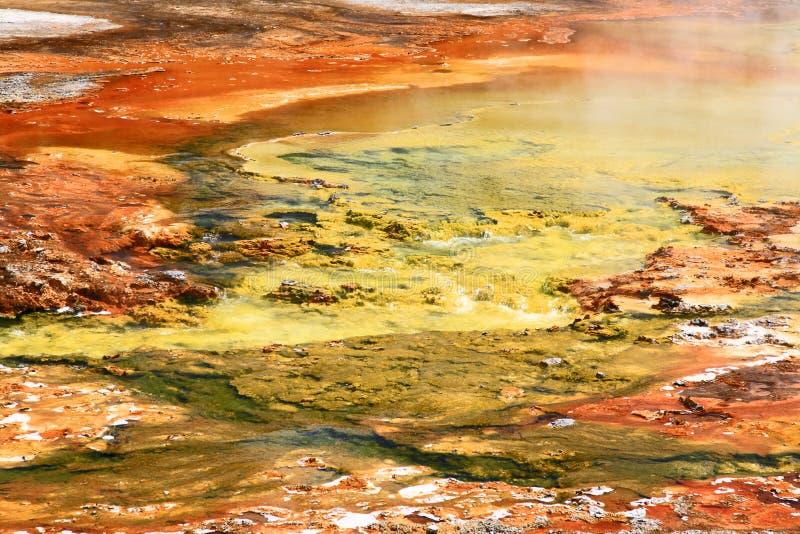 水池喷泉中途黄石 免版税图库摄影