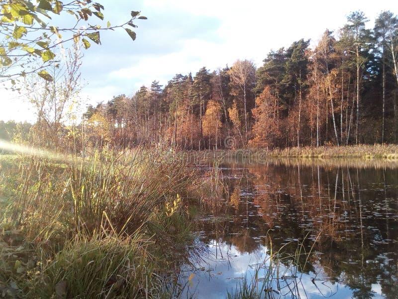 水沈默光滑的表面在河 免版税库存照片