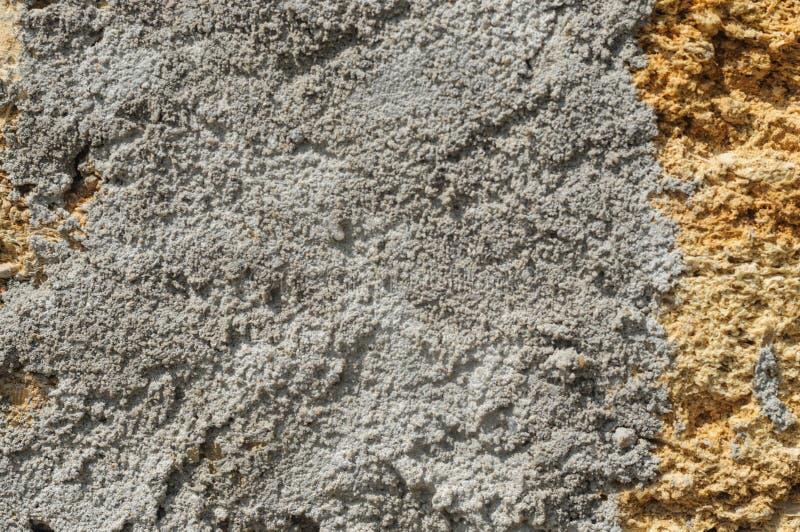 水泥纹理在砖的从贝类 免版税库存图片