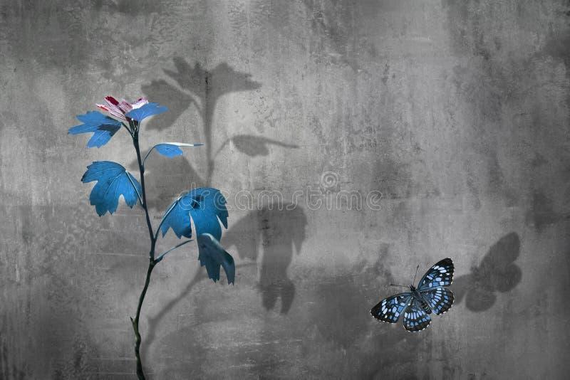 水泥背景蓝叶蓝美蝶的秋枝 极简主义城市自然形象 复制空间 库存照片