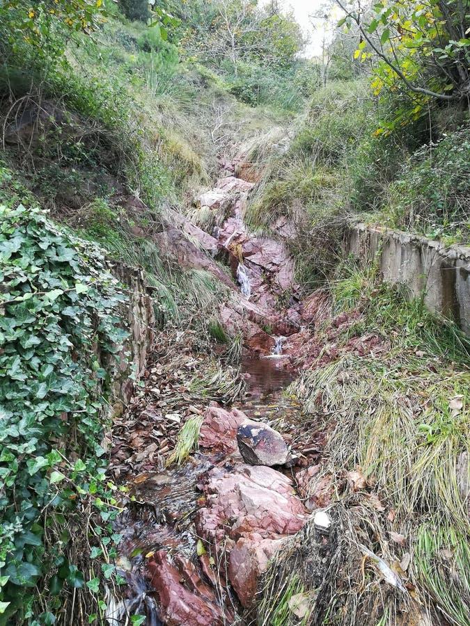 水洪流 免版税图库摄影