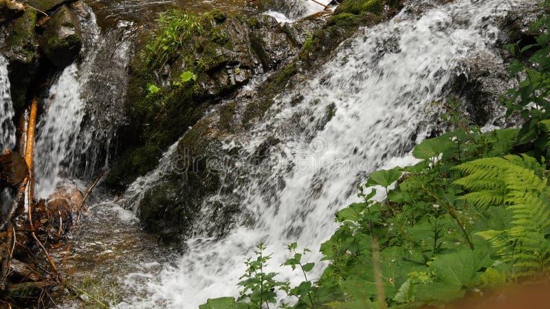 水流量关闭在小水秋天 图库摄影
