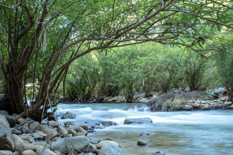 水流量通过在一条小河的岩石在王楠Pua 库存图片