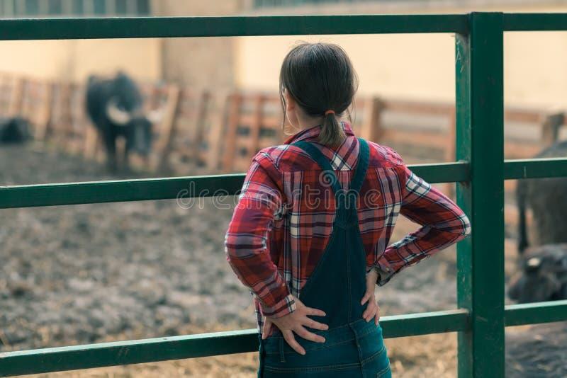 水牛农场的女性农夫 库存图片