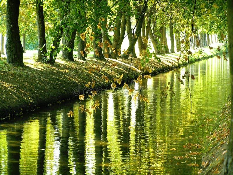 水的反射的公园大道 库存照片