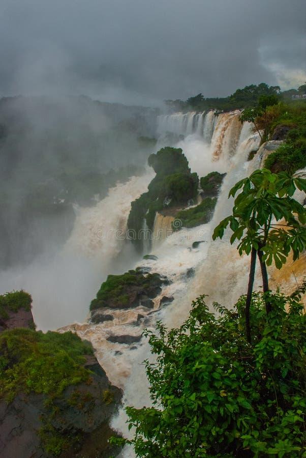 水的发怒的元素在多云和多雨天气的 伊瓜苏瀑布,拉美,阿根廷,瀑布 免版税库存图片