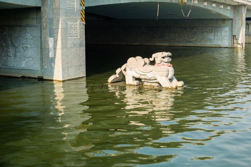 水石头老虎 免版税图库摄影