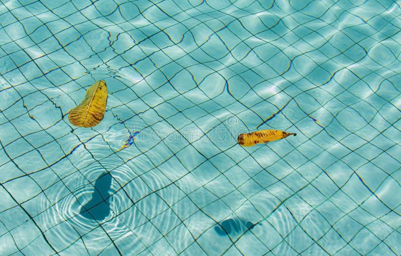 水纹理在水池的 库存照片