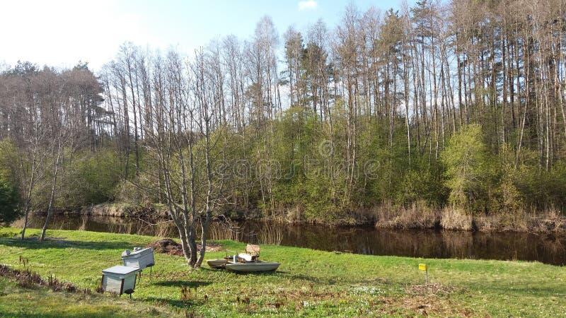 水自行车和蜂箱在河附近 库存图片