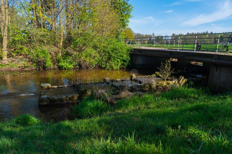 水通过自然总是寻找它的道路 免版税库存照片