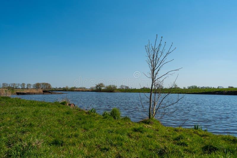 水通过自然总是寻找它的道路 图库摄影