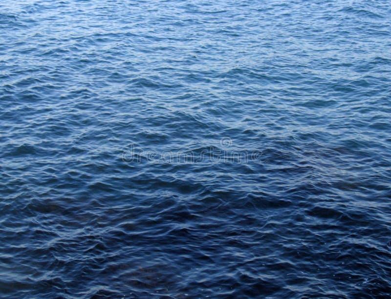 水面 免版税库存图片