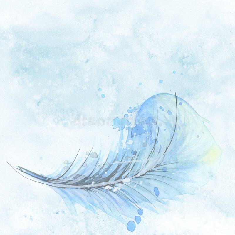 水,天空,羽毛,波浪