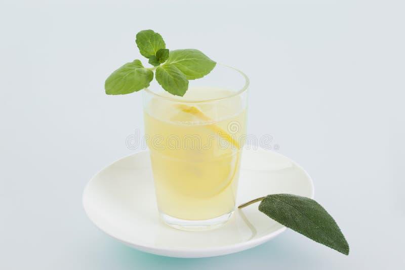 汁液柠檬薄荷 免版税库存照片
