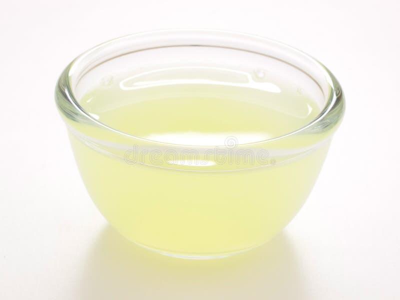 汁液柠檬 库存图片