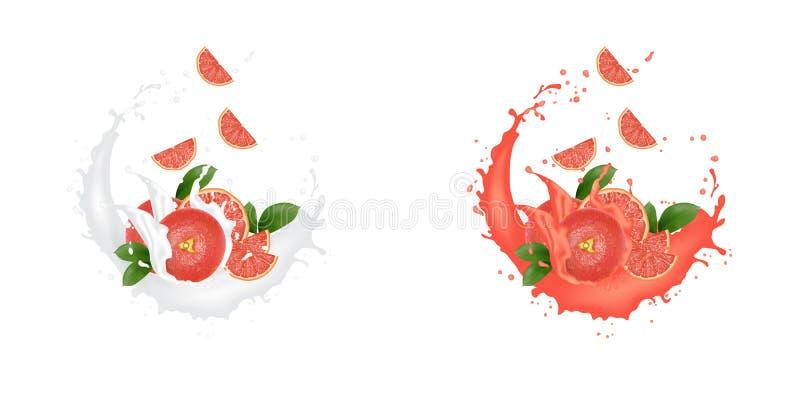汁液牛奶酸奶葡萄柚切片飞溅 水多的葡萄柚飞溅包装的模板 广告横幅 库存例证
