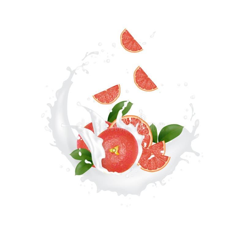 汁液牛奶酸奶葡萄柚切片飞溅 _水多葡萄柚飞溅包装模板 广告横幅 落的切片 向量例证
