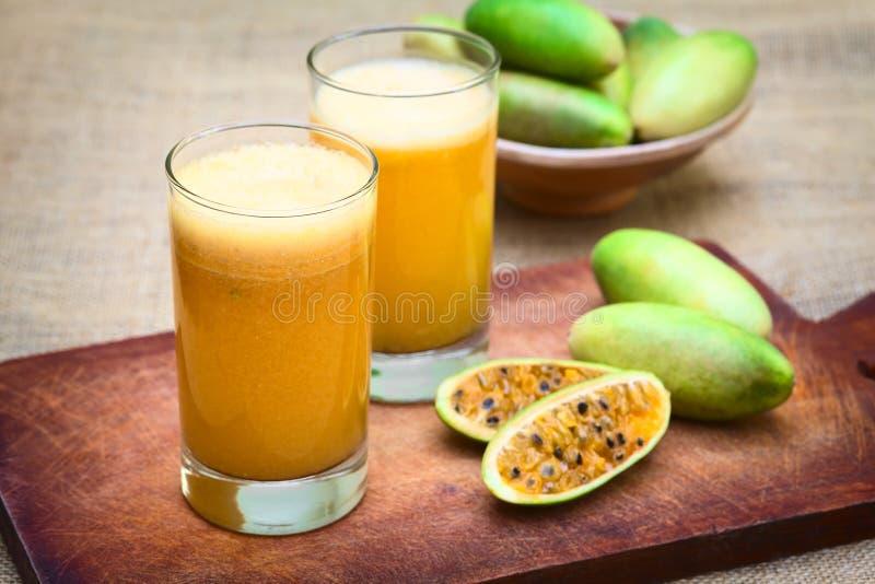 汁液由香蕉Passionfruit (拉特制成 西番莲Tripartita) 免版税图库摄影