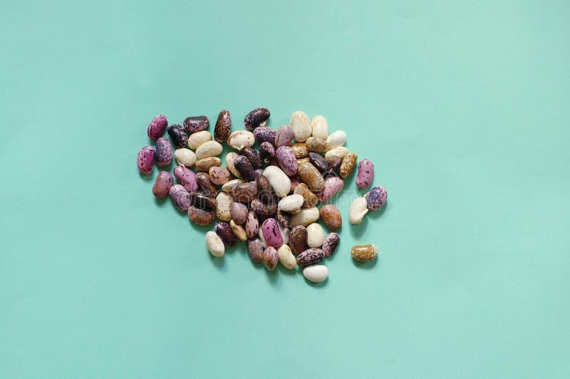汇集套各种各样的干肾脏豆类扁豆紧密隔绝在蓝色背景 健康的食物 免版税图库摄影