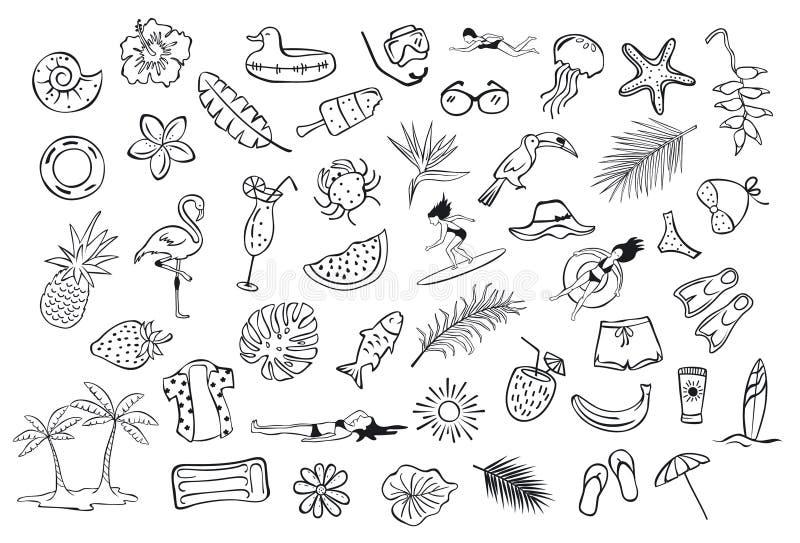 汇集套手拉的被概述的夏令时项目反对概略乱画,火鸟, toco toucan菠萝西瓜冲浪者 向量例证