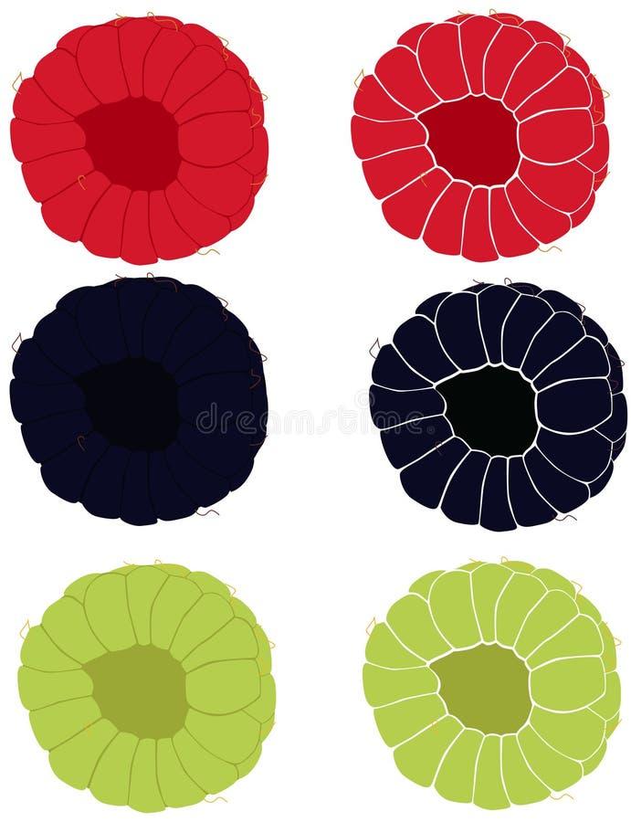 汇集用莓和黑莓 库存例证