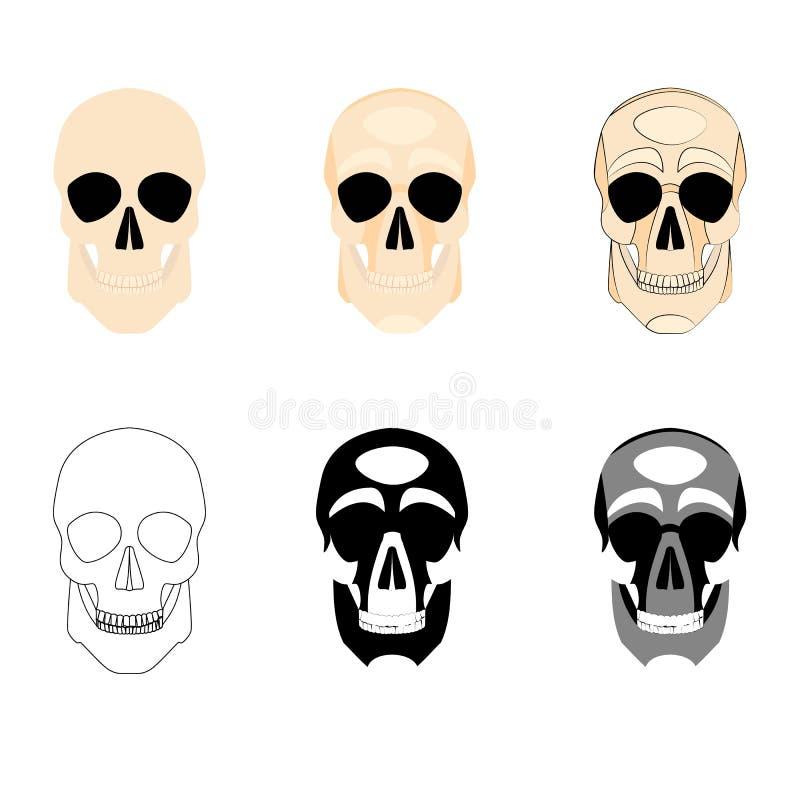 汇集象人的头骨商标以各种各样的样式,剪影,线,颜色,简单,单色 向量例证
