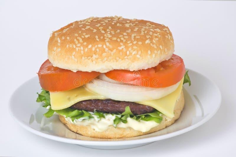 汉堡包水多的肉 库存图片