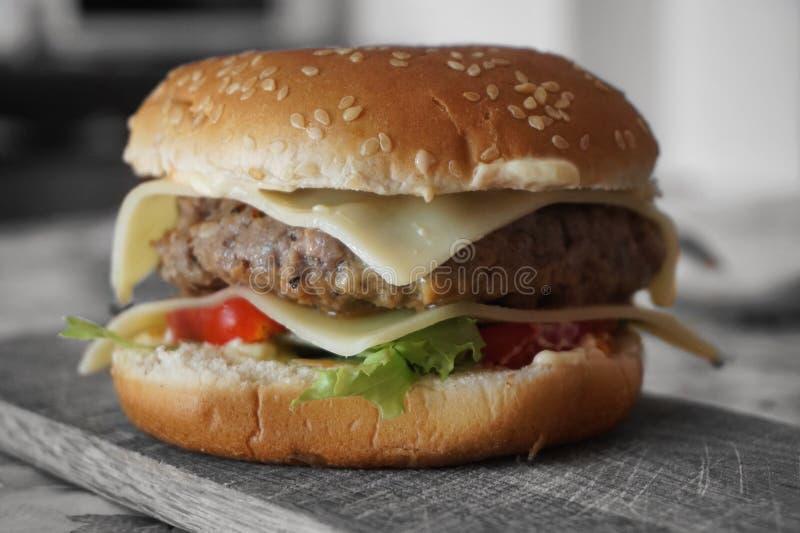 汉堡包 免版税库存照片
