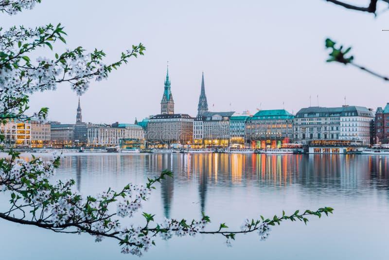 汉堡城镇厅美丽的景色- Rathaus和阿尔斯坦河春天收入晚上 免版税库存照片