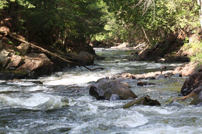 汉茨维尔,安大略加拿大溪秋天 免版税库存图片