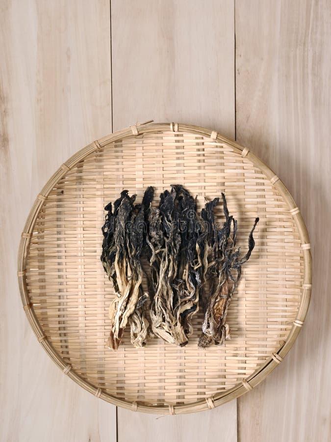汉语烘干了芥末叶子 库存照片