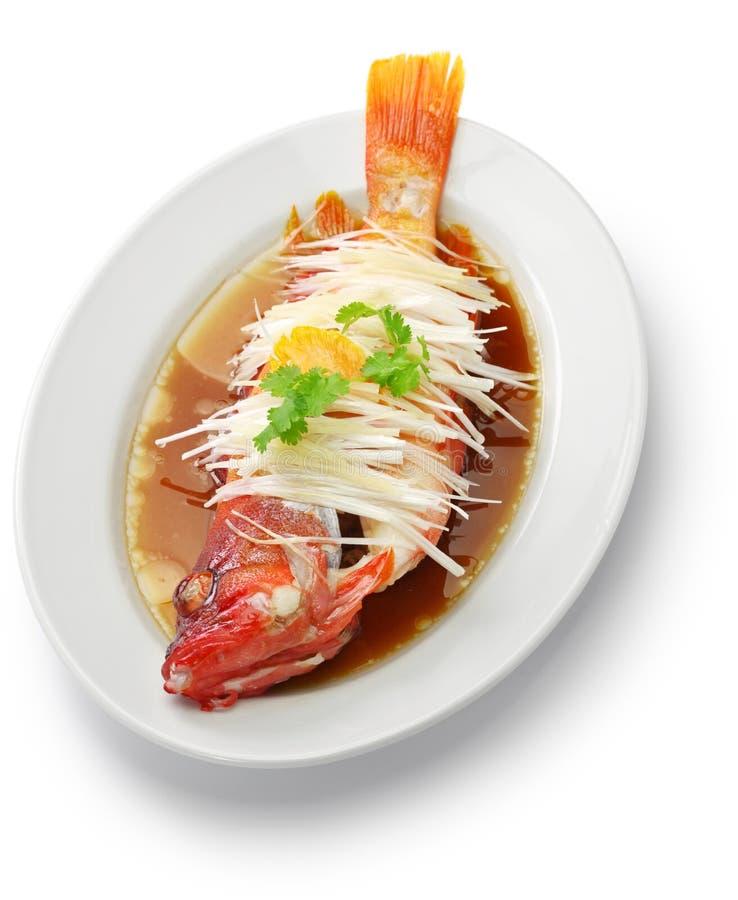 汉语被蒸的红色石斑鱼 库存照片