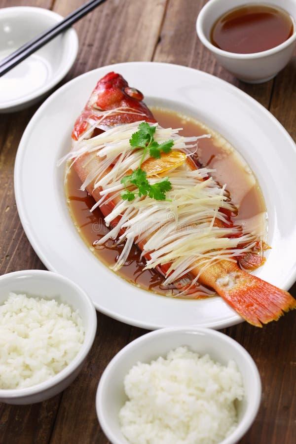 汉语被蒸的红色石斑鱼 库存图片