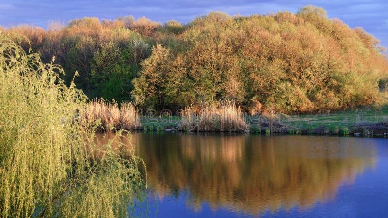 江边春天, Corbeance,伊尔福夫县,罗马尼亚 免版税库存照片