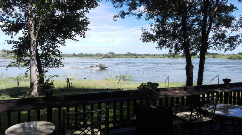江边赞比西河赞比亚 免版税库存图片