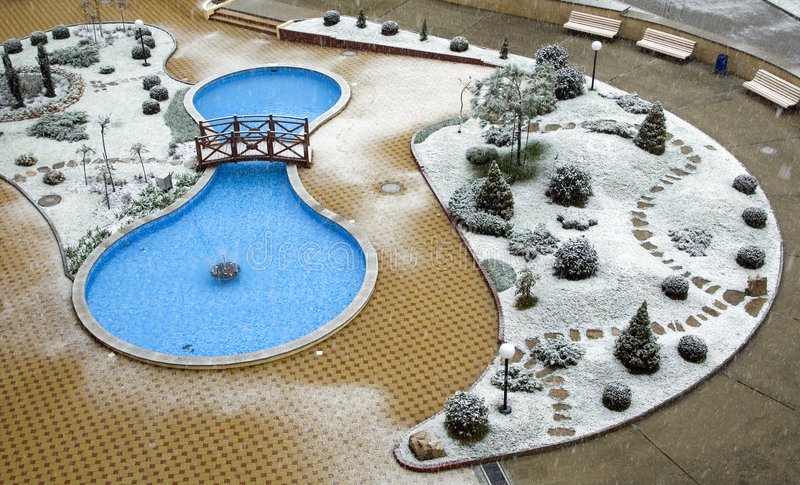 池冬天 免版税库存图片