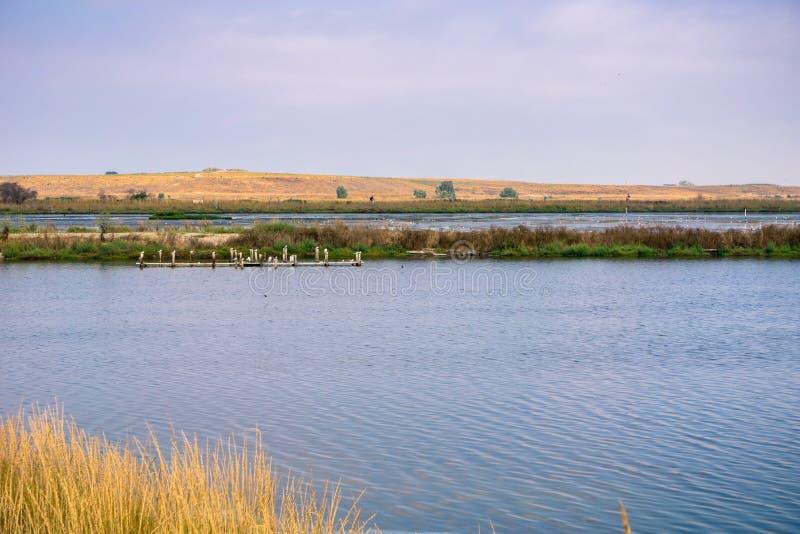 池塘和堤坝在旧金山湾,山景城,加利福尼亚南部;最近关闭了并且加盖了帕洛阿尔托垃圾填埋  图库摄影