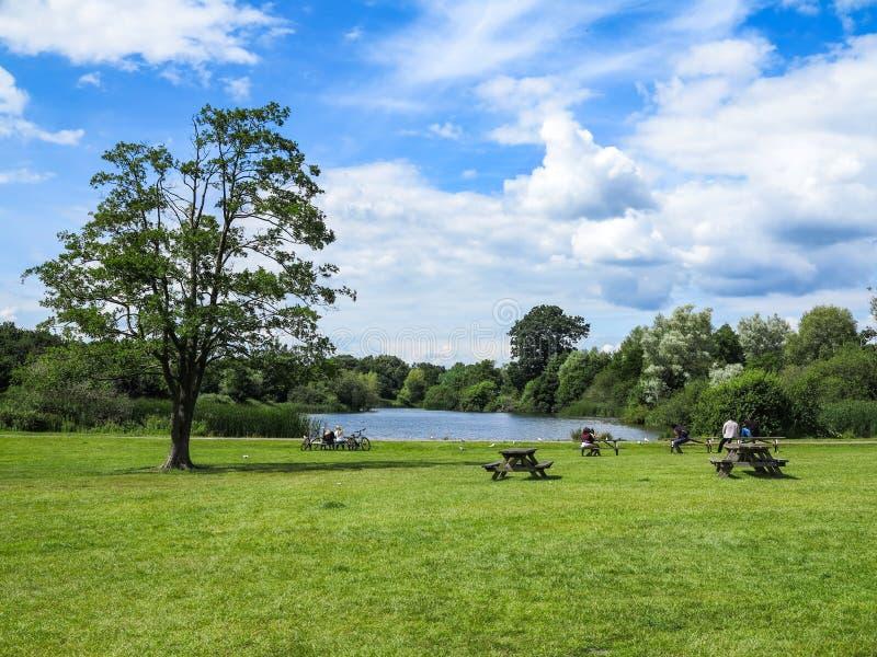 池塘和野餐桌 免版税库存照片