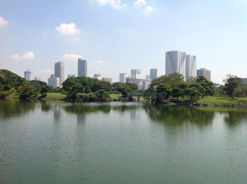 池塘在一个公园在东京 免版税库存照片