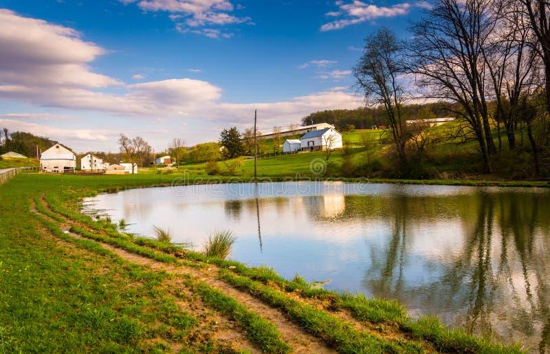 池塘在农村约克县,宾夕法尼亚 免版税图库摄影