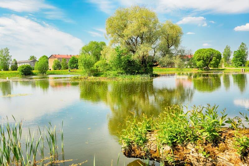 池塘在村庄Kabile,拉脱维亚 图库摄影