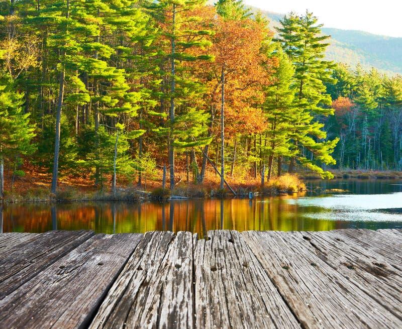 池塘在白色山国家森林,新罕布什尔里 免版税库存照片