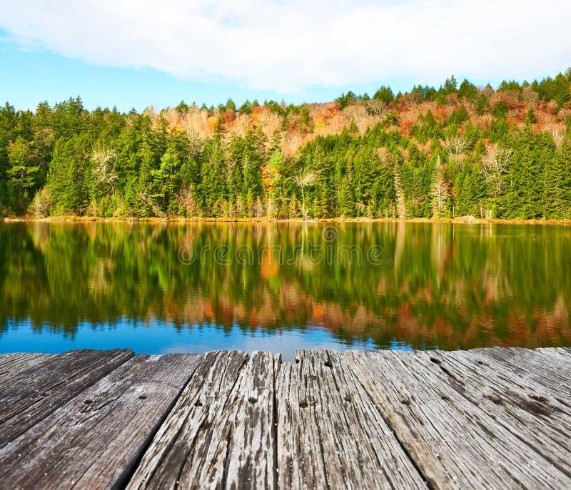 池塘在白色山国家森林,新罕布什尔里 免版税库存图片