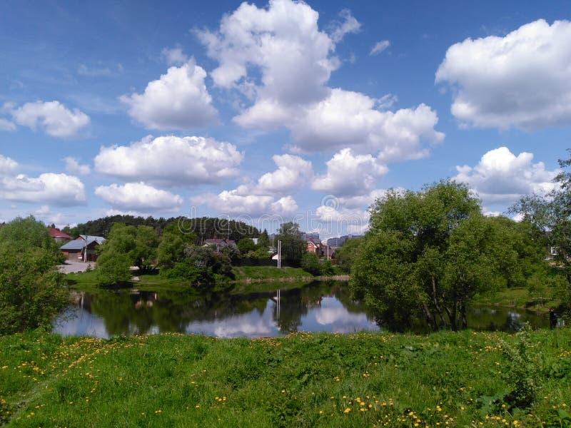 池塘在郊区 图库摄影