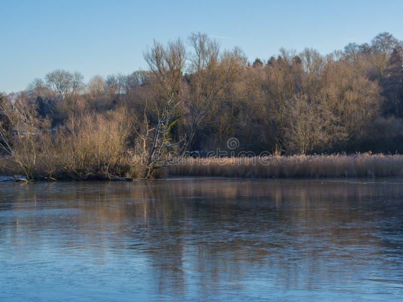 冻池塘在1月 库存照片