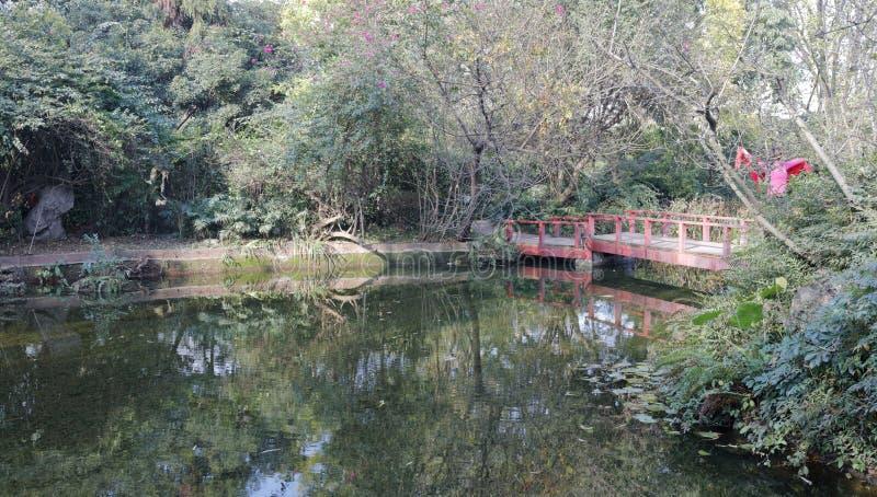 池塘在baihuatan公园,多孔黏土rgb 免版税图库摄影