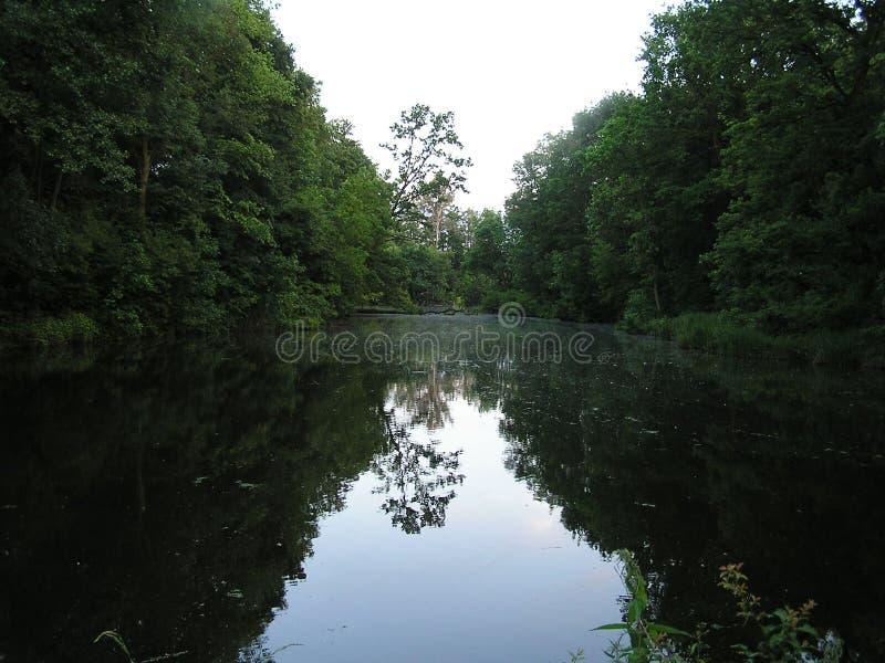 池塘在DÄ™bina 库存照片